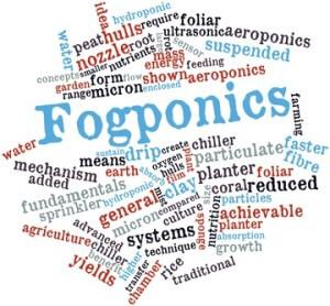 Fogponics
