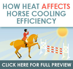 Misting Horses Infographic Banner
